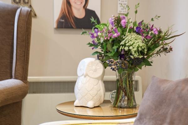 hailsham dentist prices dental barn